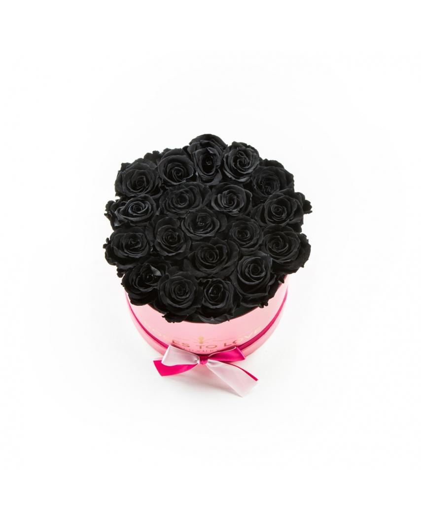 coleccion zafiro rosa