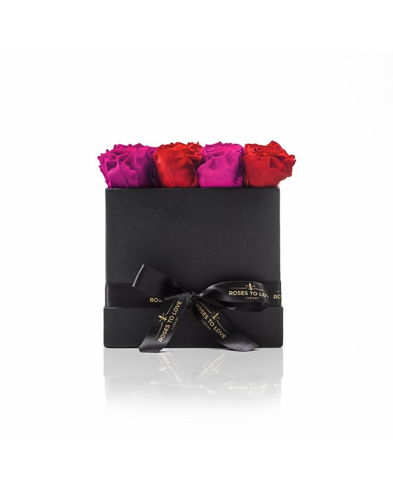 Colección París Negro