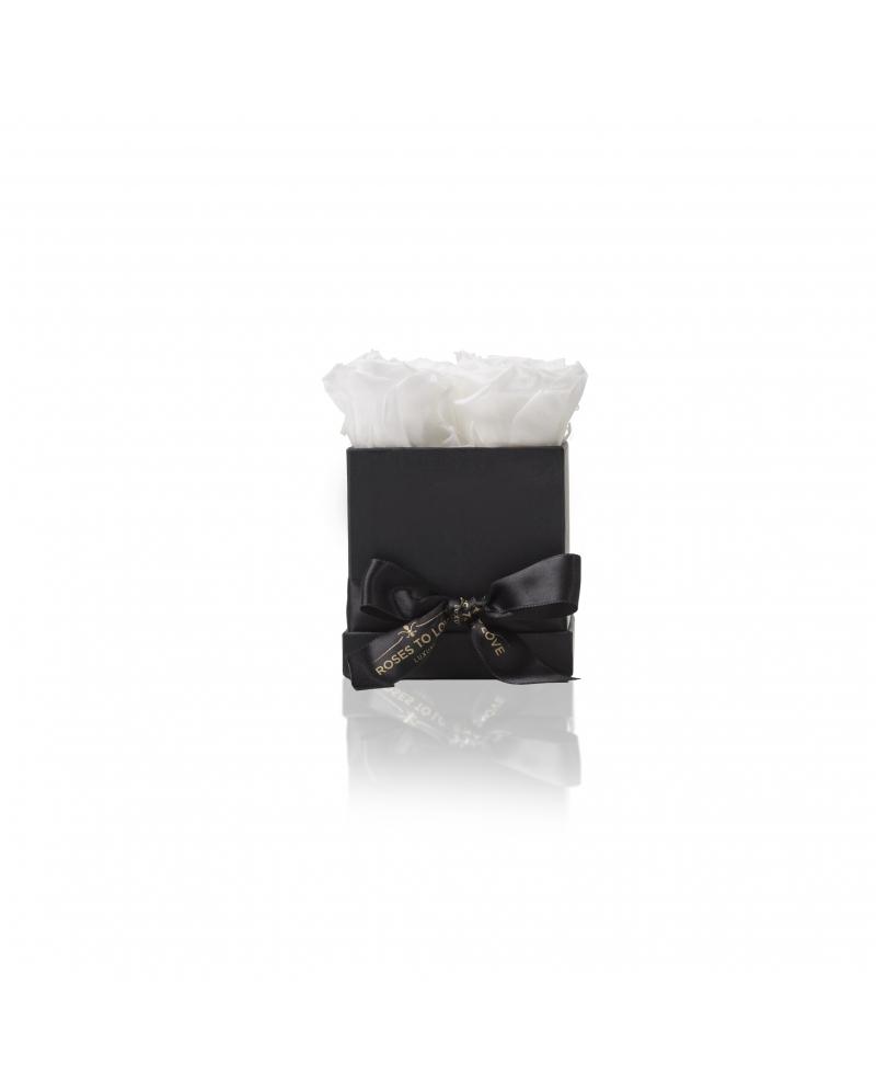 Mónaco Negro (1 color)