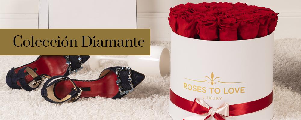 Colección Diamante de rosas preservadas