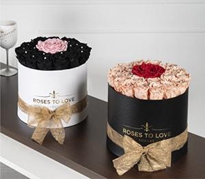 Rosas preservadas - Colección Exclusive