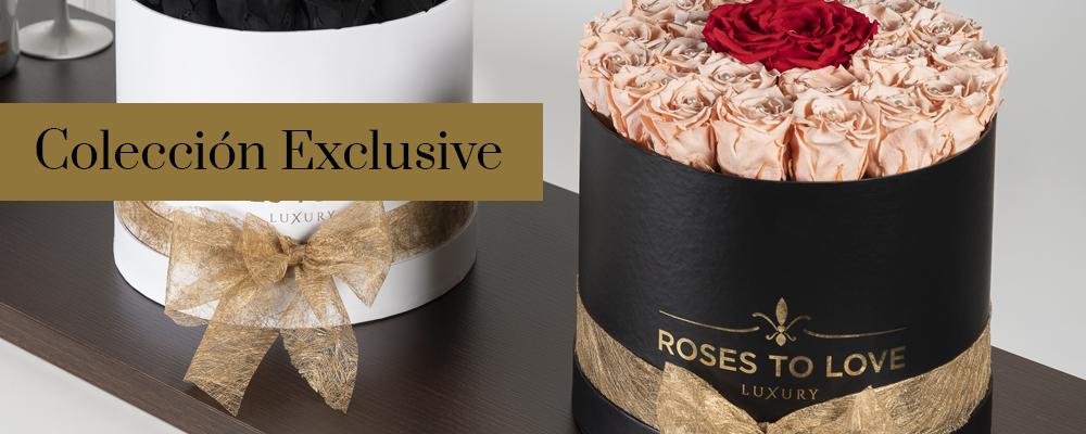 Colección Exclusive de rosas preservadas