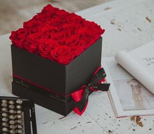 Rosas preservadas - Colección París