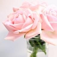 𝐸𝑠𝑡𝑎𝑚𝑜𝑠 𝑝𝑟𝑒𝑝𝑎𝑟𝑎𝑛𝑑𝑜 𝑚𝑢𝑐ℎ𝑎𝑠 𝑛𝑜𝑣𝑒𝑑𝑎𝑑𝑒𝑠 𝑝𝑎𝑟𝑎 𝑣𝑜𝑠𝑜𝑡𝑟𝑥𝑠. ¡𝐸𝑠𝑡𝑎𝑑 𝑎𝑡𝑒𝑛𝑡𝑥𝑠 𝑝𝑜𝑟𝑞𝑢𝑒 𝑚𝑢𝑦 𝑝𝑟𝑜𝑛𝑡𝑜 𝑜𝑠 𝑐𝑜𝑛𝑡𝑎𝑟𝑒𝑚𝑜𝑠 𝑚á𝑠! 🌹#rosestolove #rosaspreservadas #rosaseternas #eternityroses #regalosespeciales #regalarosas #rosasespaña #rosaspreservadasespaña #rosasonline #love #handmade #rosas #home #decohome #deco #nature #deco #decohome #vintage #vintagedeco #vintageinspo #inspodeco #home