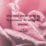 """""""𝑇𝑒 𝑞𝑢𝑒𝑟𝑟é ℎ𝑎𝑠𝑡𝑎 𝑞𝑢𝑒 𝑠𝑒 𝑚𝑎𝑟𝑐ℎ𝑖𝑡𝑒 𝑙𝑎 ú𝑙𝑡𝑖𝑚𝑎 𝑟𝑜𝑠𝑎""""#rosestolove #rosaspreservadas #rosaseternas #eternityroses #regalosespeciales #regalarosas #rosasespaña #rosaspreservadasespaña #rosasonline #love #handmade #rosas #home #decohome #deco #nature #deco #decohome #vintage #vintagedeco #vintageinspo #inspodeco #home"""