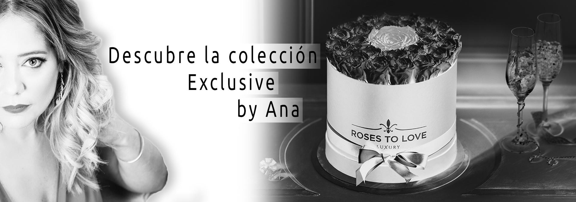 Colección Exclusive Roses to Love