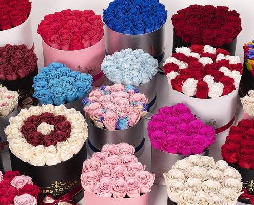 Conjuntos de rosas preservadas