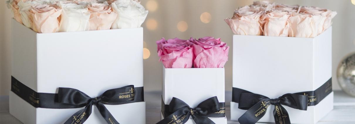 Comprar rosas eternas